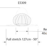 E5309